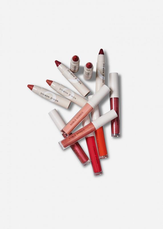 Shades of you Lip Kit